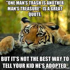 Eye Of The Tiger Meme - terrible tiger know your meme