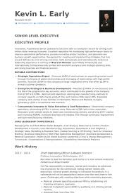 Coo Resume Templates Chief Operating Officer Resume Samples Visualcv Resume Samples