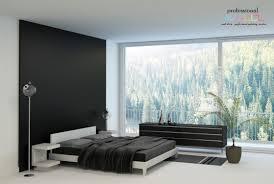 Feature Wall In Master Bedroom Splendid Bedroom Feature Walls On Splendid Bedroom Feature Walls