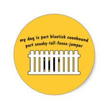 bluetick coonhound decals funny coonhound stickers zazzle