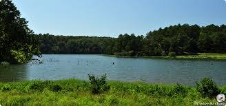 Arkansas nature activities images Horsehead lake recreation area of arkansas explore the ozarks jpg