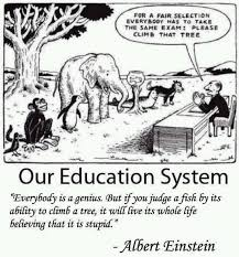 Einstein Meme - our education system quote by einstein greenmedinfo memes