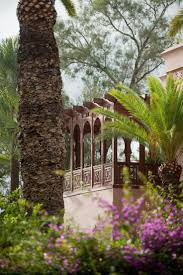 friends of peacehaven botanic park inc new members new plants 961 best vacation images on pinterest luxury hotels marrakech