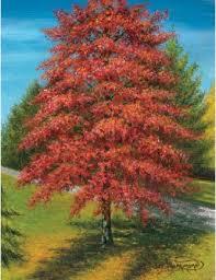 paint an autumn tree in acrylic with hammond