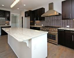 purchase kitchen cabinets kitchen wonderful kitchen cabinets online solid wood refreshing