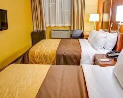Comfort Inn Brooklyn Sunset Park Comfort Inn Hotels In Brooklyn Ny By Choice Hotels