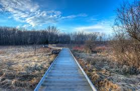 Wisconsin landscapes images Free stock photo of landscapes boardwalk at beckman 39 s mill jpg
