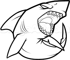 how to draw a cool shark step 7 crafty things pinterest