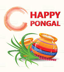 Pongal Invitation Cards Happy Pongal Greeting Card On White Background Makar Sankranti