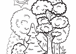 forest coloring pages u0026 printables education com