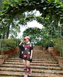 Botanical Gardens In Singapore get a jump of your day in singapore botanic gardens unesco world