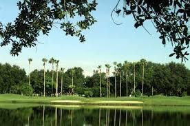 orange tree golf club in orlando