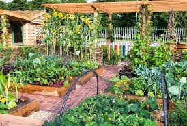 Fruit And Vegetable Garden Layout Vegetable And Fruit Garden Tomato Vegetable Fruit Garden