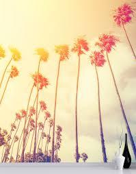 all retro california sunset palmtree wall mural 6050