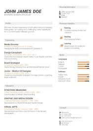 cv template powerful online cv builder irresistible cv templates