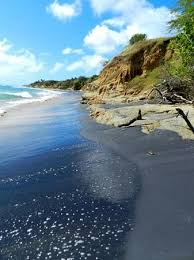 black sand beach isla de vieques all you need to know before