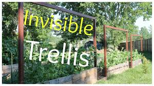 invisible trellis a cheap raised bed trellis system youtube