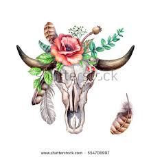 floral skull stock images royalty free images vectors