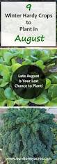 august planting guide 5 late august is your last chance to get