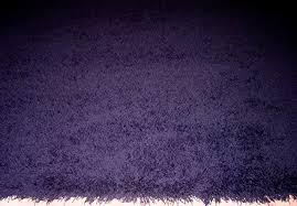 Fuzzy Purple Rug Rug Color Gallery