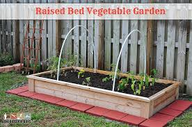 starting a raised bed vegetable garden from scratch 28 images