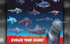 hungry shark evolution hacked apk нтм сервис 98 hungry shark evolution take of a