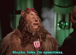 Aww Shucks Meme - shucks speechless gif shucks speechless wizard discover share gifs