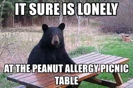 Bear At Picnic Table Meme - it sure is lonely at the peanut allergy picnic table picnic bear