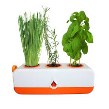 smart hydroponic kitchen garden system in simple methods