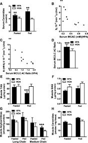 a lipidomics analysis of the relationship between dietary fatty
