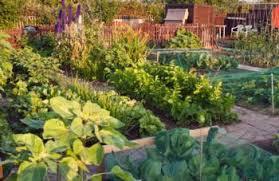 garden design garden design with home gardening courses from the