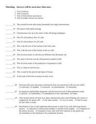 printables meiosis worksheet answers ronleyba worksheets printables