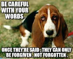 Sad Animal Memes - sad dog memes on memegen