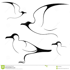 seagull isolated objects white background vector illustration eps