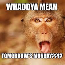 Baboon Meme - meme maker surprise monkey generator