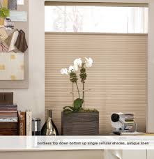 Top Down Bottom Up Cellular Blinds Phase Ii Cordless Single Cellular Tdbu Top Down Bottom Up Light