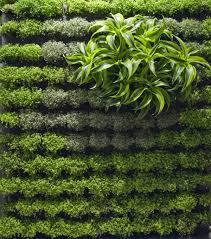 walled garden designs u2013 cicaki