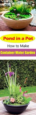 Container Water Garden Ideas Pond In A Pot Create A Container Water Garden Balcony Garden Web