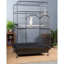 Extra Large Rabbit Cage Extra Large Bird Cage Seed Guard Bird Cages Pinterest Large