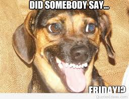 Its Friday Memes 18 - funny dog happy friday cartoon saying 2015