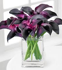 Calla Lily Bouquets Deep Waters Calla Lily Bouquet Fc77 69 99 Florist Los