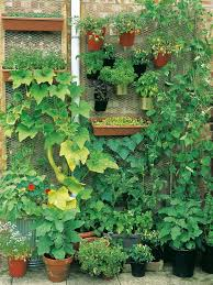 Diy Home Garden Ideas Small Spaces Can Yield Big Results Diy