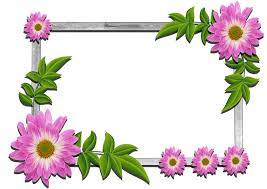 photo frame flowers frame 5 gallery yopriceville high quality images