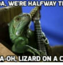 Lizard Toast Meme - 25 best memes about hentai impregnation gif hentai