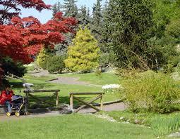 giardini rocciosi in ombra citt罌 di torino verde pubblico