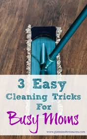774 best do it home economics images on pinterest cleaning hacks