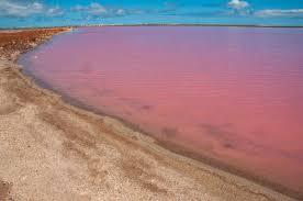 Pink Lake The World U0027s Weirdest Most Amazing Lakes