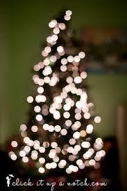 tree light bokeh click it up a notch