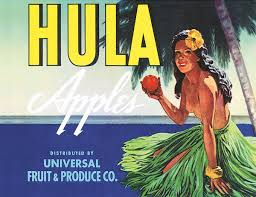 how america 8217 s obsession with hula almost wrecked