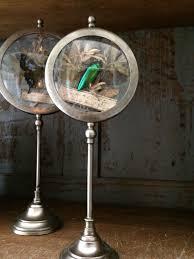 meuble de metier industriel insecte sous verre pm meuble de metier industriel entomologie